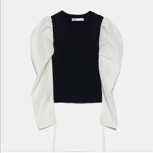 Zara Organza Long Sleeve Black and White Blouse